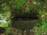 The Lady Well at Headon